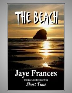 the beach by jaye frances a psychological suspense thriller