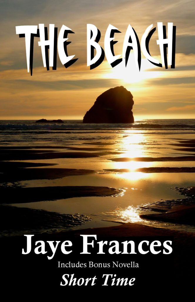 The Beach by Jaye Frances a psychological suspense thriller with a supernatural edge